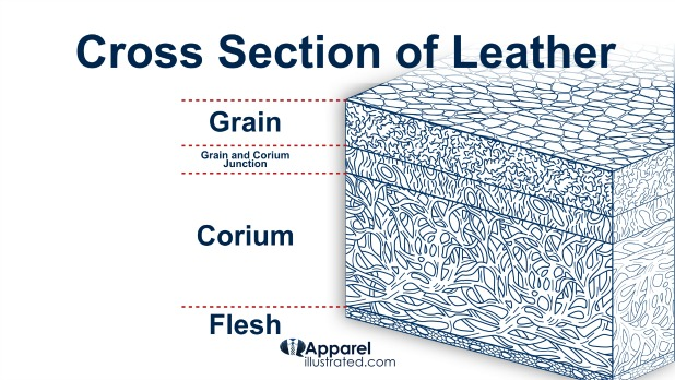 cross section of dress shoe leather